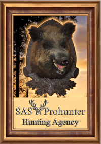 SAS Prohunter Hunting Agency